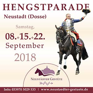 Hengstparade 2018