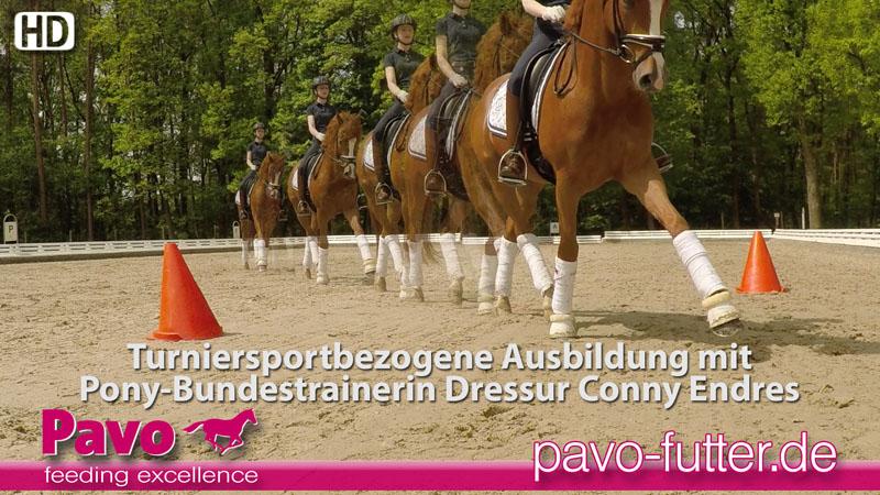 Video: Turniersportbezogene Ausbildung mit Pony-Bundestrainerin Dressur Conny Endres