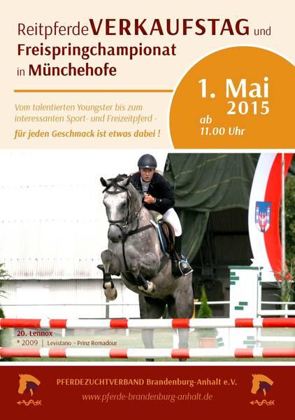 Reitpferdeverkaufstag und Freispringchampionat am 1. Mai in Münchehofe